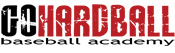Go Hardball Baseball Academy: Private Lessons, Personal Training, and Digital Video Analysis